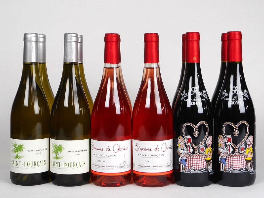 Saint-Pourçain 2019 'Terrific Trio'  Mixed Case Wine Offer