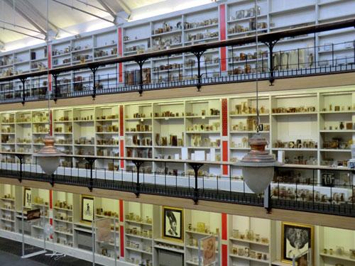St Barts Museum of Pathology
