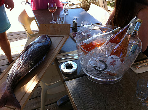Fish and rosé