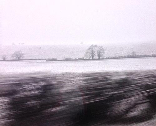Lionheart Longleat snow