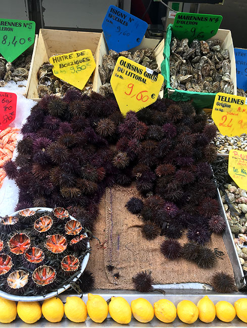 Fruits de Mer (Les Oursins)